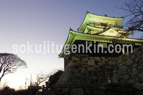 浜松城のライトアップはかなり素晴らしい