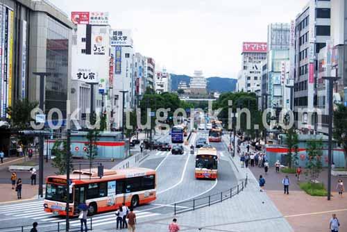 姫路の街は由緒溢れる街並みとして知られております