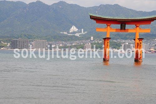 広島の厳島神社を見る鳥居との眺めは圧巻