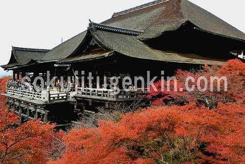 一度は訪れてみたい京都の清水寺