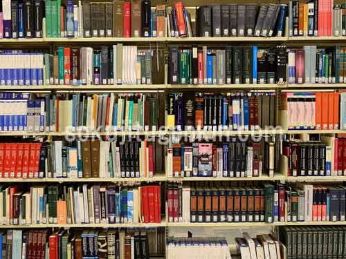 図書館には様々な人が記した本がたくさんあります